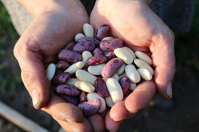 10 potravin, které pomáhají bojovat s Alzheimerovou chorobou