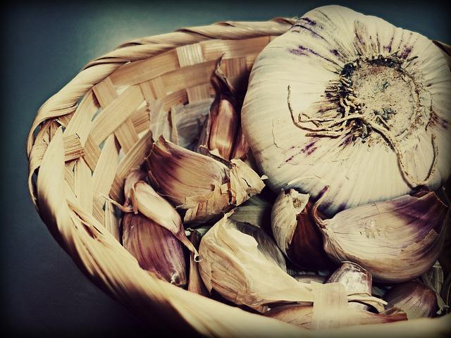Česnek – královská bylina