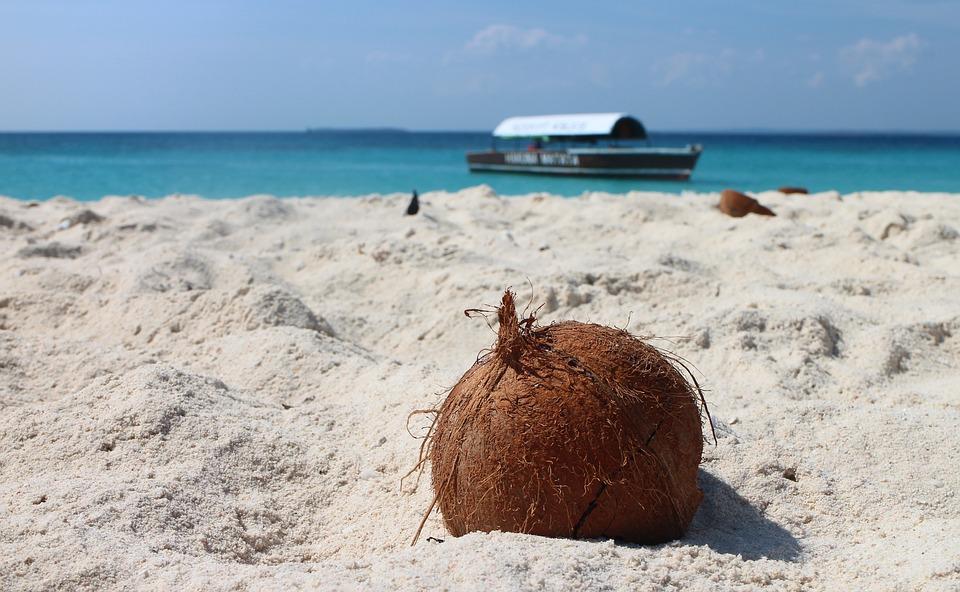 Kokosový olej – zázrak z tropů