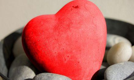 Orgán měsíce května – srdce