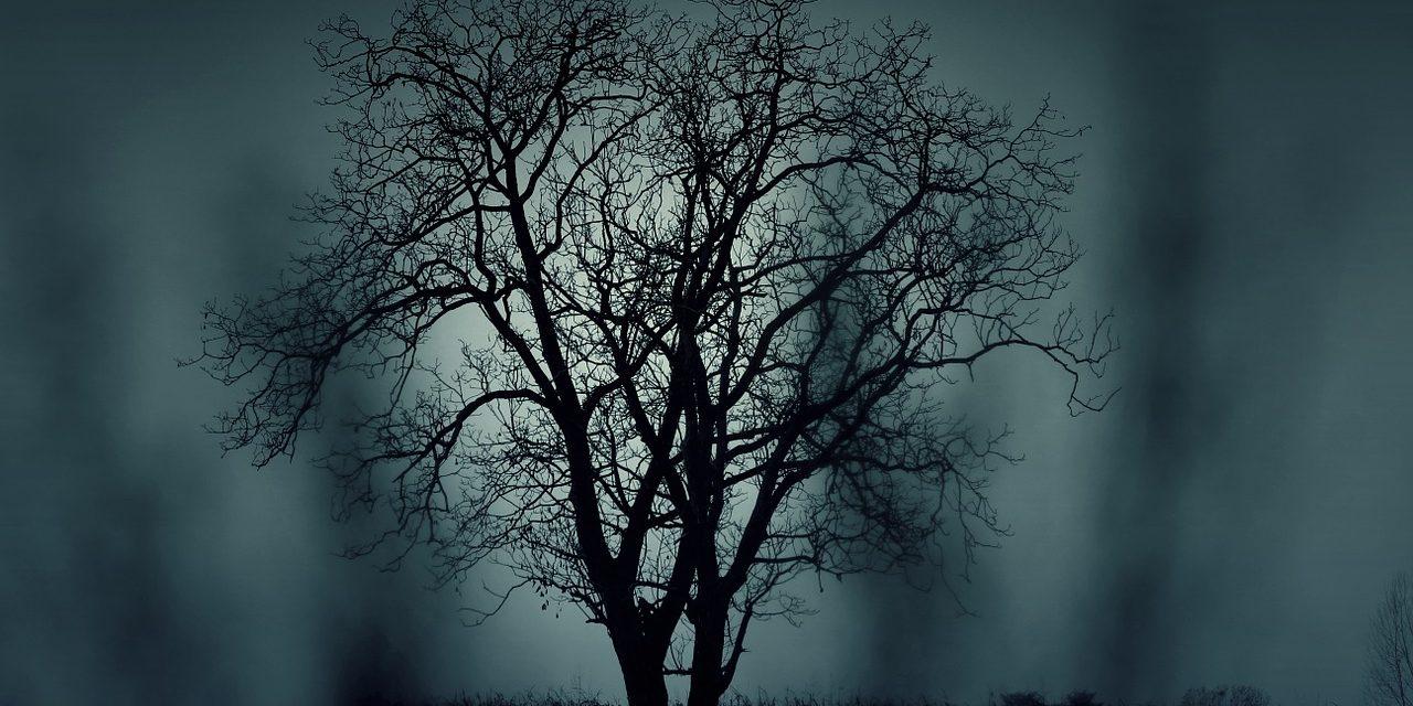 Samhain – keltský nový rok